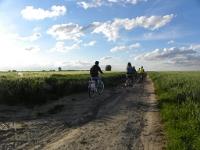 Découvrir le plateau de Fléquières au sud de Lille
